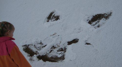 09-snowangel.jpg