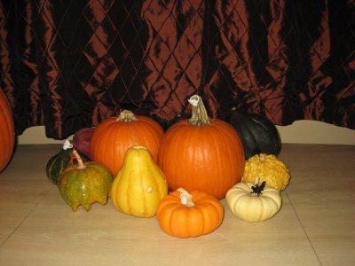 gourds01